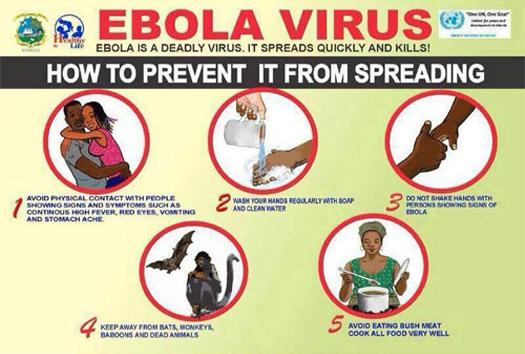 ebola-virus-525x354