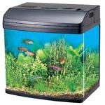 В ласнамяэские ломбарды приносят даже аквариумы с рыбками. Иллюстративное фото.