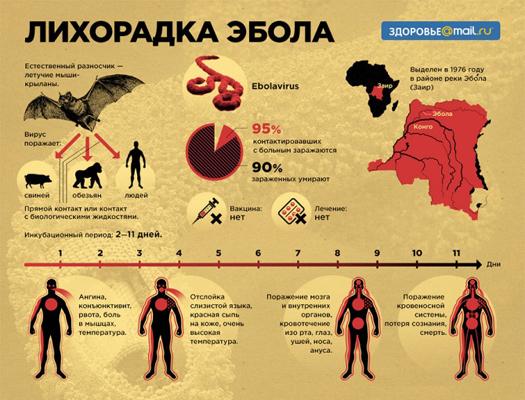 ebola-lihoradka-525x400-1